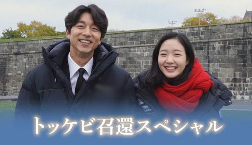 トッケビ召喚スペシャル(韓国ドラマ)無料動画配信チェック【1話〜最終回】