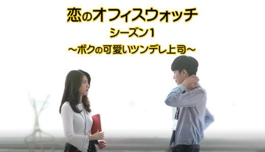 『恋のオフィス・ウォッチ シーズン1』無料動画配信チェック【1話〜最終回】韓国ドラマ